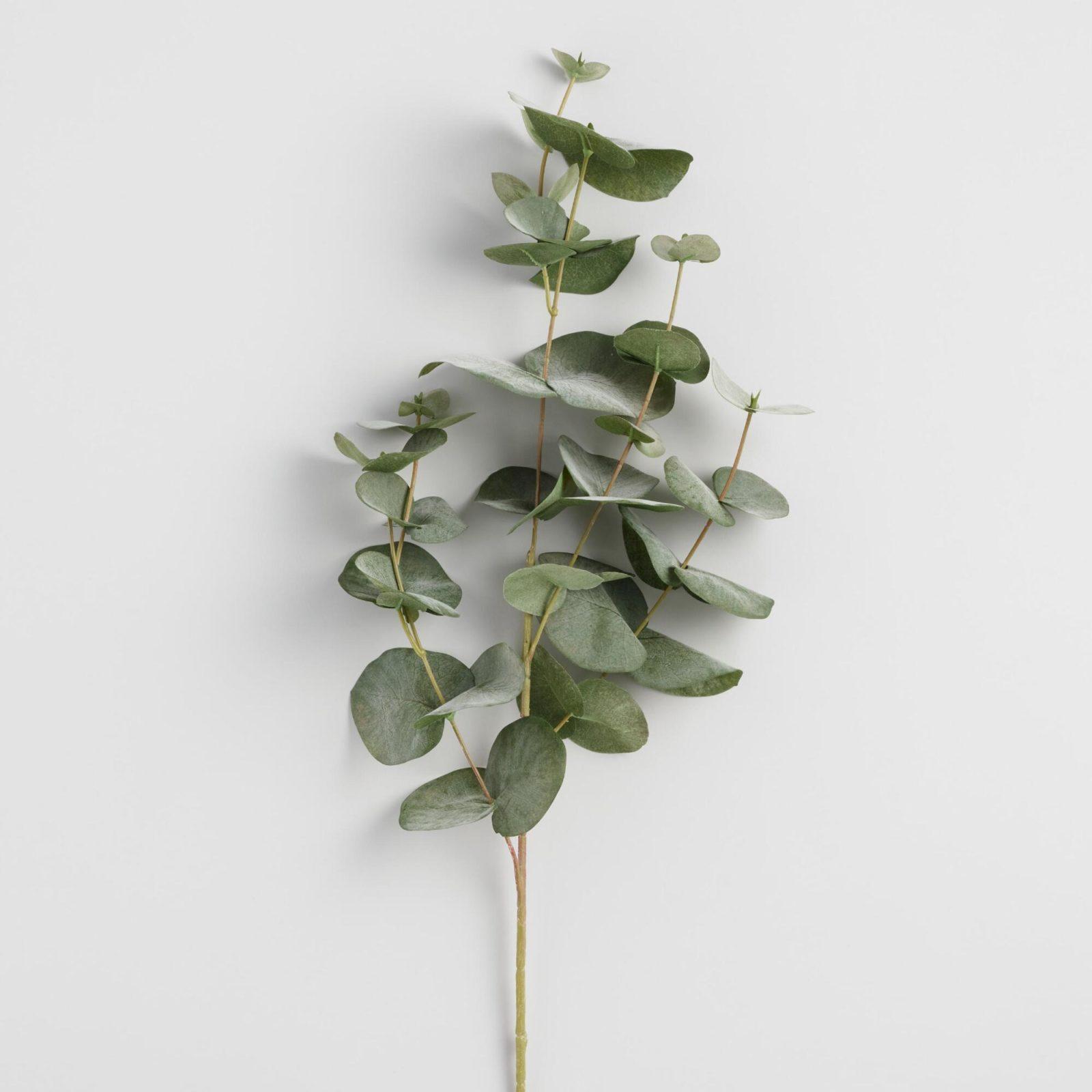 fauxeucalyptusspray